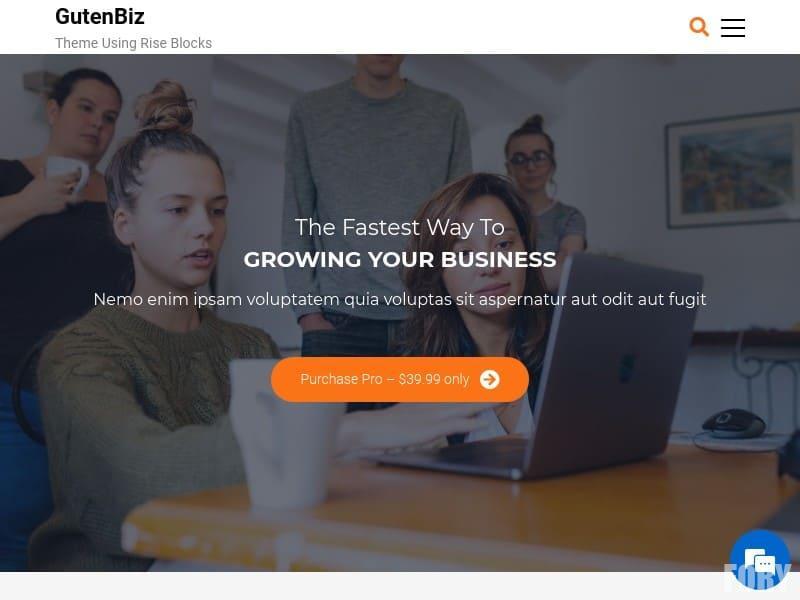 gutenbiz - бесплатная тема WP за январь 2020