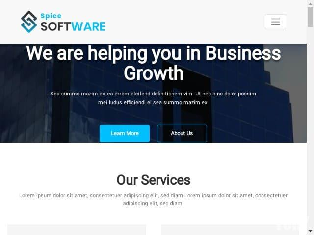 Spice Software - шаблон WordPress
